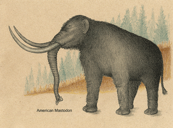[Image: mastodon.jpg]